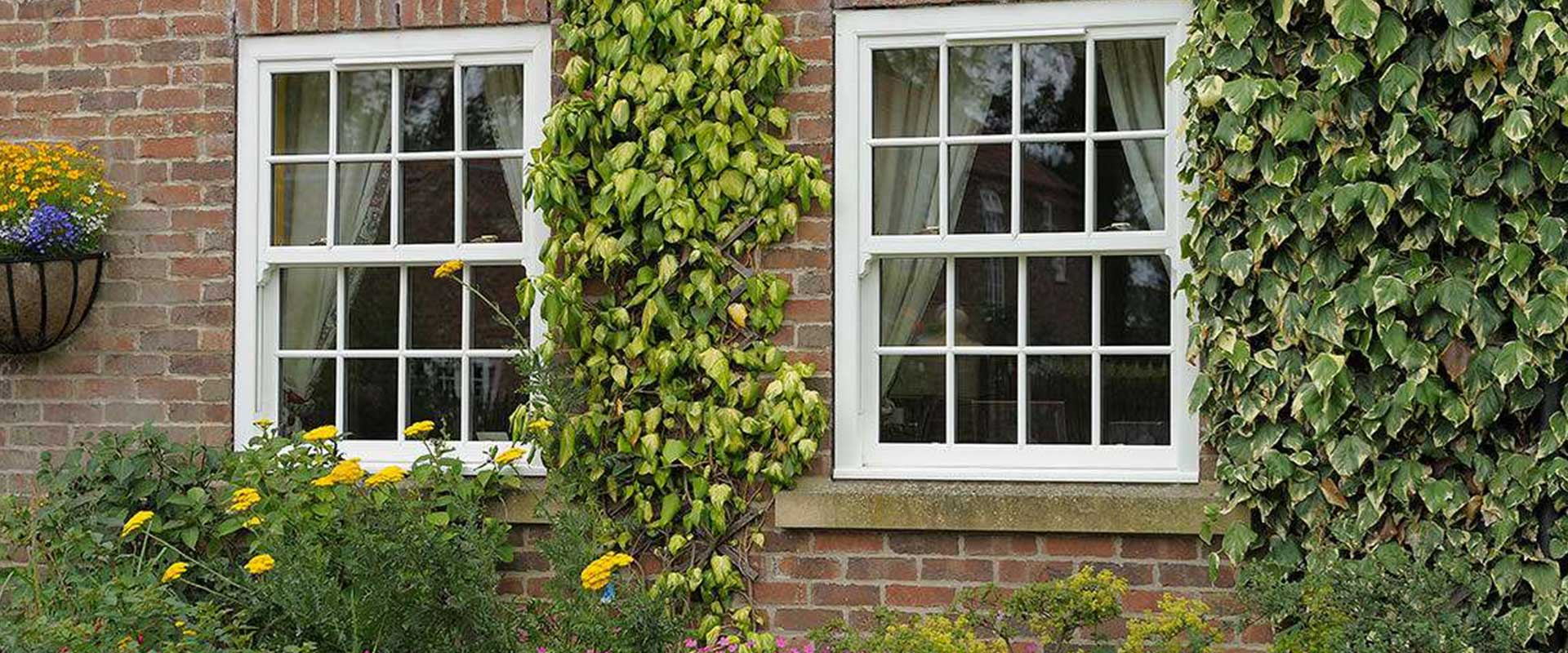 sash windows guildford
