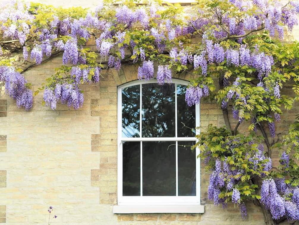 Sliding Sash Windows Surrey